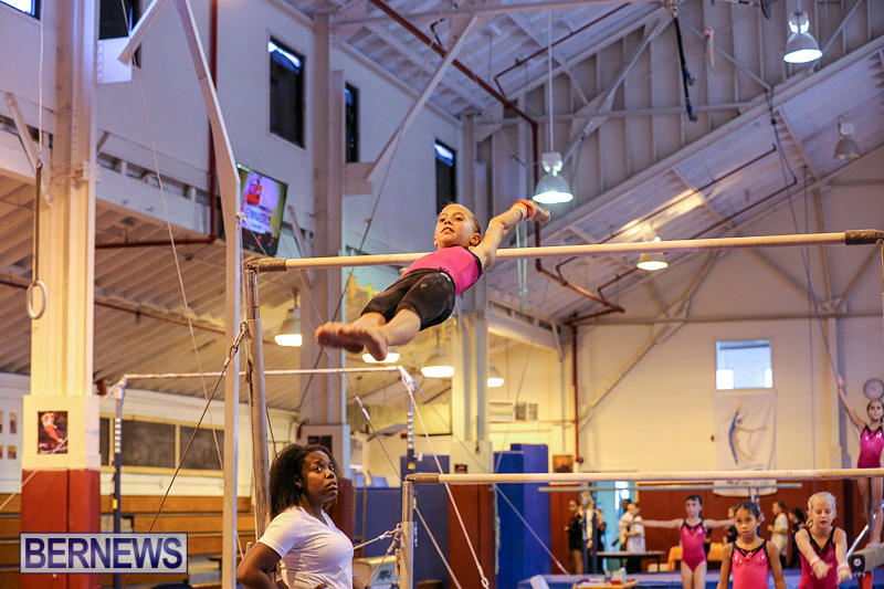 Bermuda-Gymnastics-November-12-2016-17