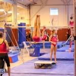 Bermuda Gymnastics, November 12 2016-18