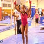 Bermuda Gymnastics, November 12 2016-21