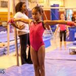 Bermuda Gymnastics, November 12 2016-22