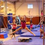 Bermuda Gymnastics, November 12 2016-23