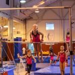 Bermuda Gymnastics, November 12 2016-25