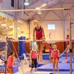 Bermuda Gymnastics, November 12 2016-26