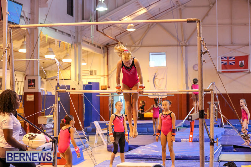 Bermuda-Gymnastics-November-12-2016-26
