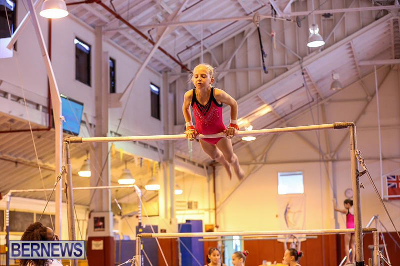 Bermuda-Gymnastics-November-12-2016-28