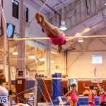 Bermuda Gymnastics, November 12 2016-29