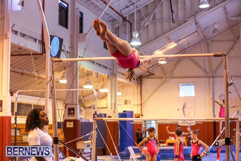 Bermuda-Gymnastics-November-12-2016-29
