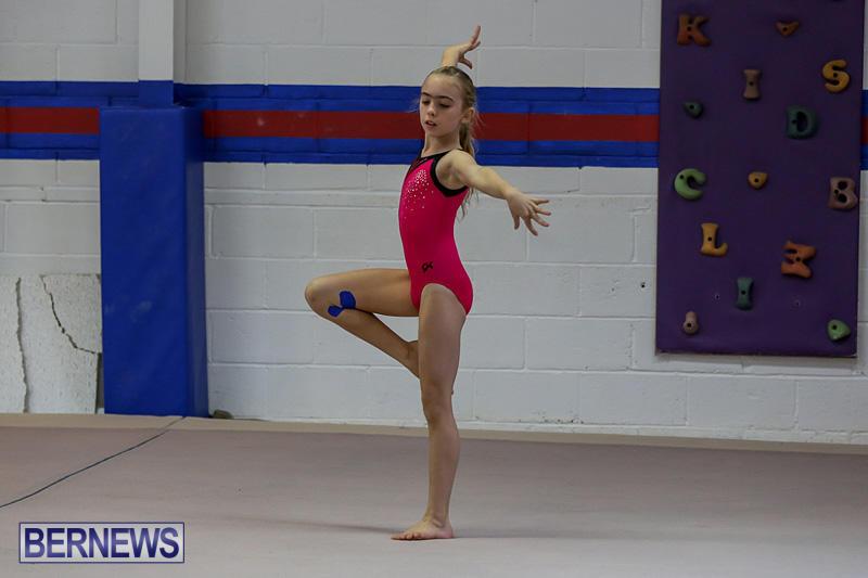 Bermuda-Gymnastics-November-12-2016-3