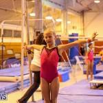 Bermuda Gymnastics, November 12 2016-30