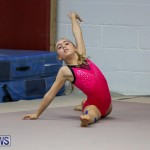 Bermuda Gymnastics, November 12 2016-4