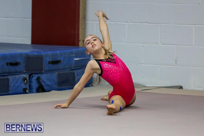 Bermuda-Gymnastics-November-12-2016-4