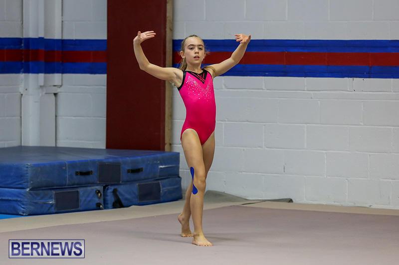 Bermuda-Gymnastics-November-12-2016-5