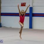 Bermuda Gymnastics, November 12 2016-6