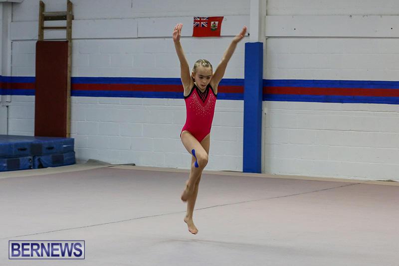 Bermuda-Gymnastics-November-12-2016-6