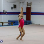 Bermuda Gymnastics, November 12 2016-8