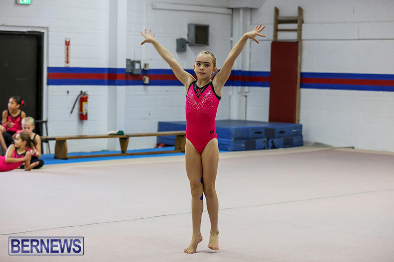 Bermuda-Gymnastics-November-12-2016-9