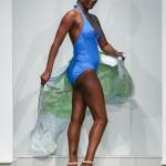 Dana Cooper Bermuda Fashion Collective, November 3 2016-V (45)