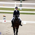 FEI World Dressage Challenge Bermuda Nov 12 2016 (13)