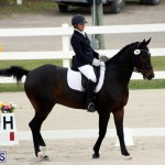 FEI World Dressage Challenge Bermuda Nov 12 2016 (14)