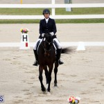 FEI World Dressage Challenge Bermuda Nov 12 2016 (16)