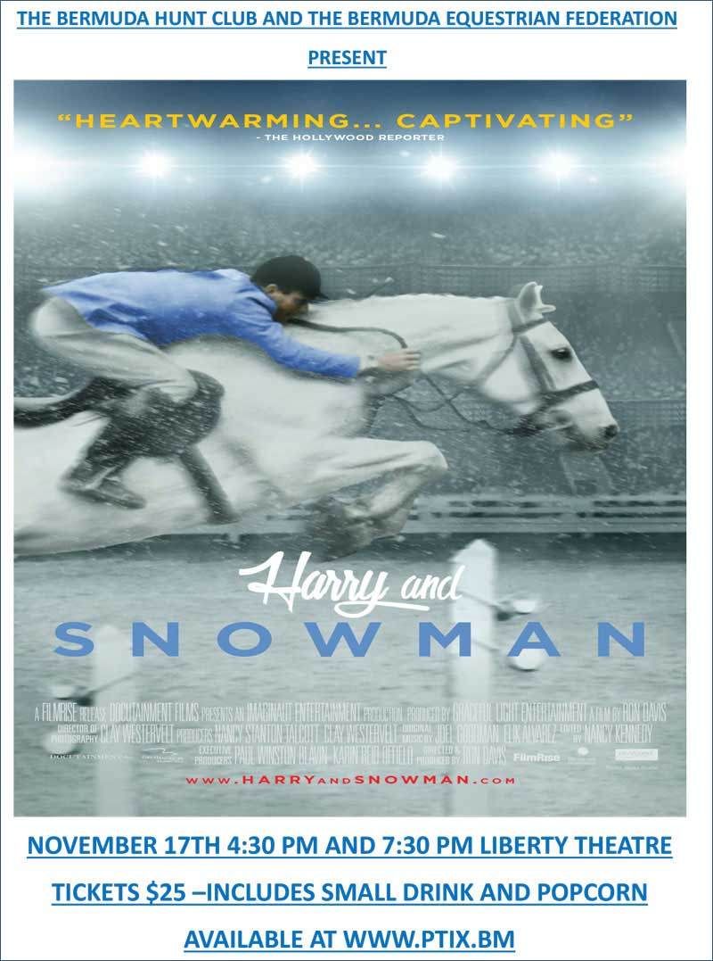 Harry and the snowman poster blue