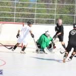 Hockey Bermuda November 2016 (10)
