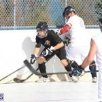Hockey Bermuda November 2016 (11)
