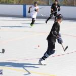 Hockey Bermuda November 2016 (17)