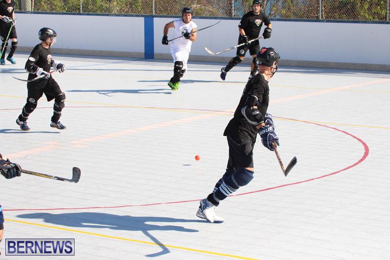 Hockey-Bermuda-November-2016-17