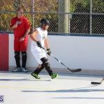 Hockey Bermuda November 2016 (18)