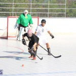 Hockey Bermuda November 2016 (3)