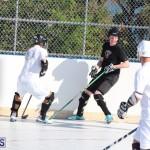 Hockey Bermuda November 2016 (7)