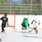 Hockey Bermuda November 2016 (9)