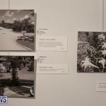 Mindframe Photovoice Art Show Bermuda, November 18 2016-13