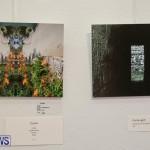 Mindframe Photovoice Art Show Bermuda, November 18 2016-15