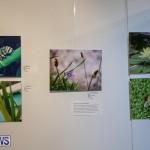 Mindframe Photovoice Art Show Bermuda, November 18 2016-24