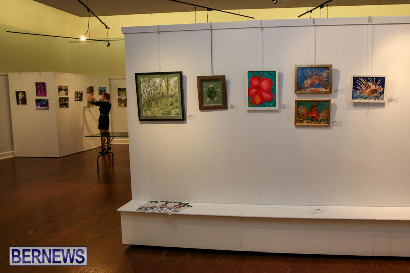 Mindframe-Photovoice-Art-Show-Bermuda-November-18-2016-3