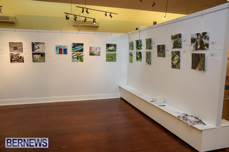 Mindframe-Photovoice-Art-Show-Bermuda-November-18-2016-7