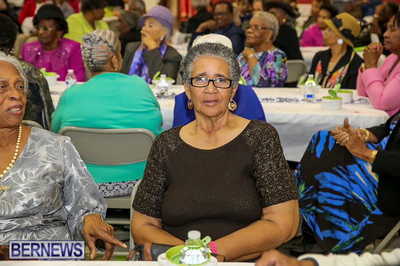 PLP-Constituency-29-Seniors-Tea-Zane-DeSilva-Bermuda-November-20-2016-13