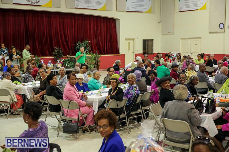 PLP-Constituency-29-Seniors-Tea-Zane-DeSilva-Bermuda-November-20-2016-2