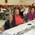 PLP Constituency 29 Seniors Tea Zane DeSilva Bermuda, November 20 2016 (24)