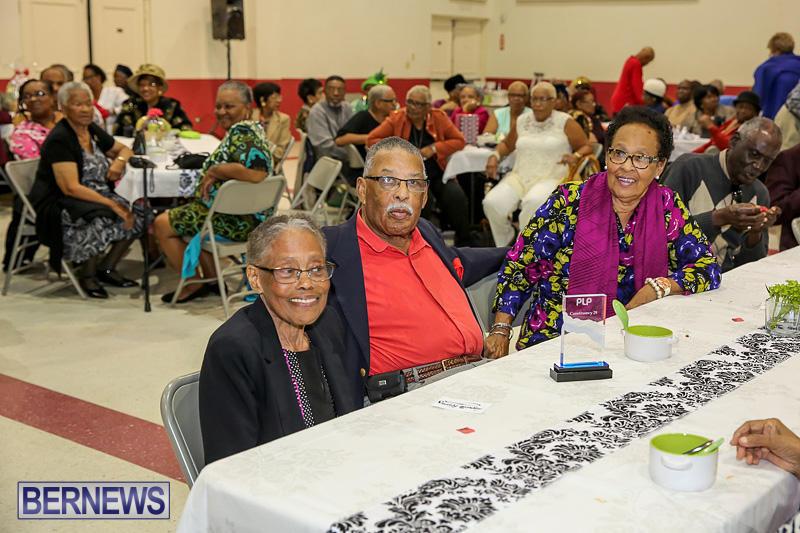 PLP-Constituency-29-Seniors-Tea-Zane-DeSilva-Bermuda-November-20-2016-24