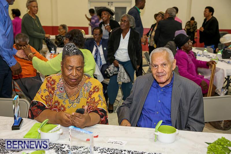 PLP-Constituency-29-Seniors-Tea-Zane-DeSilva-Bermuda-November-20-2016-34