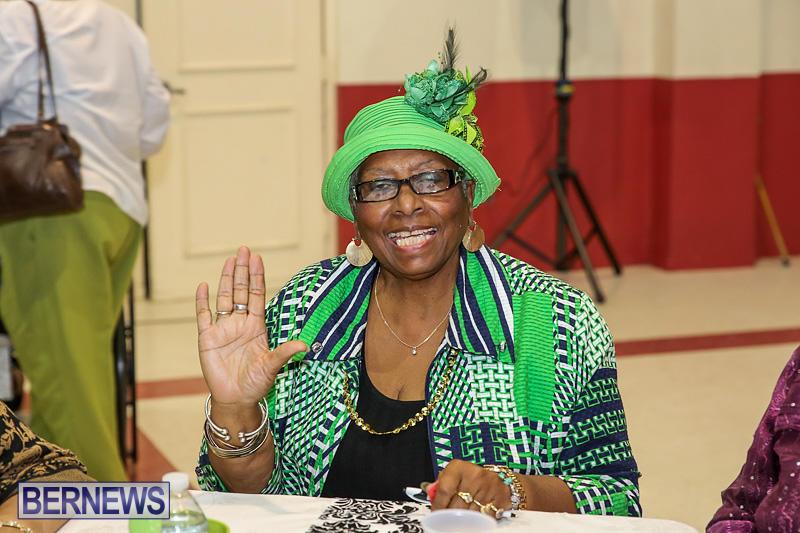 PLP-Constituency-29-Seniors-Tea-Zane-DeSilva-Bermuda-November-20-2016-35