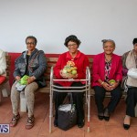 PLP Constituency 29 Seniors Tea Zane DeSilva Bermuda, November 20 2016 (48)