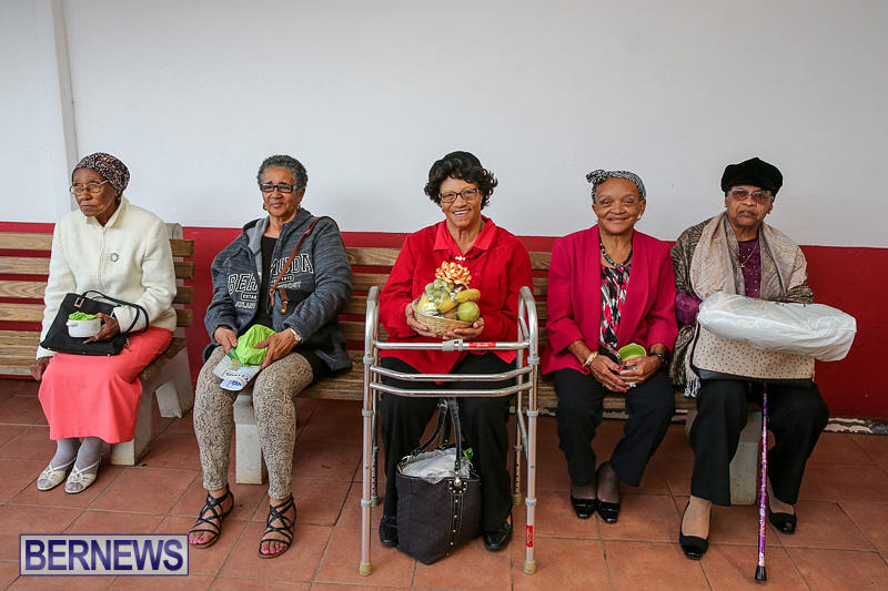 PLP-Constituency-29-Seniors-Tea-Zane-DeSilva-Bermuda-November-20-2016-48