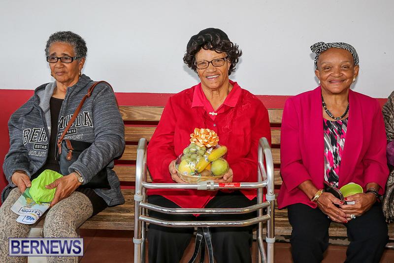 PLP-Constituency-29-Seniors-Tea-Zane-DeSilva-Bermuda-November-20-2016-49