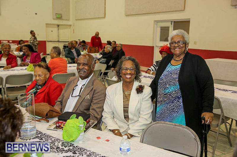 PLP-Constituency-29-Seniors-Tea-Zane-DeSilva-Bermuda-November-20-2016-5