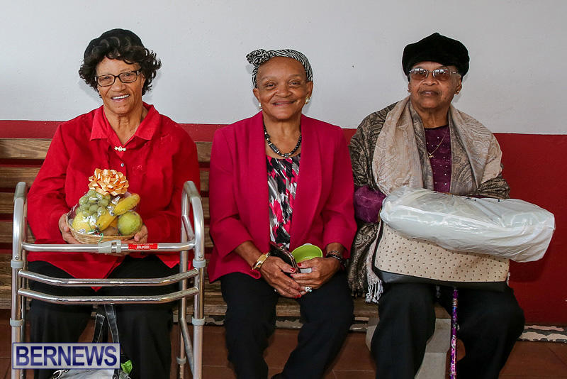 PLP-Constituency-29-Seniors-Tea-Zane-DeSilva-Bermuda-November-20-2016-50
