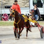 Remembrance Day Harness Racing Bermuda Nov 11 2016 (11)